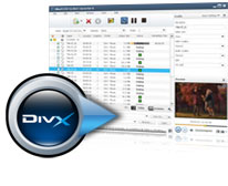 Phone inspector can easily be installed on Nidesoft DVD Ripper 5 6. 28-